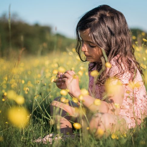 Outdoor photoshoot of a little girl playing in a butter cup field essex