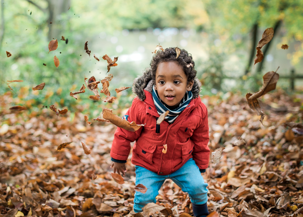 Little boy playing amongst the Autumn leaves