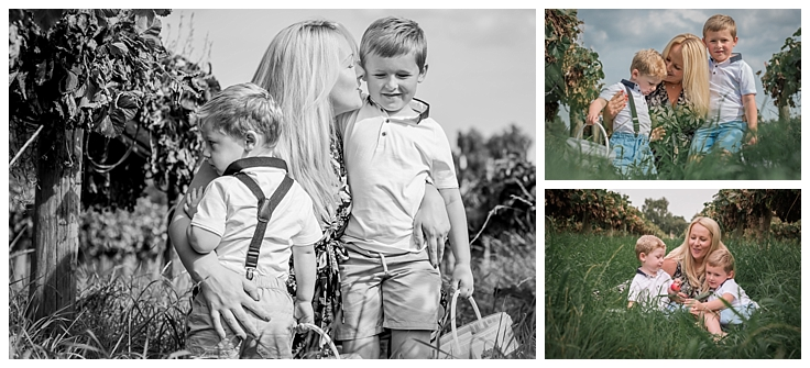 Family photography at a fruit picking farm mum and two boys Lathcoats Farm Essex.
