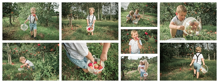 A documentary photography session at Lathcoats Fruit Picking Farm Essex