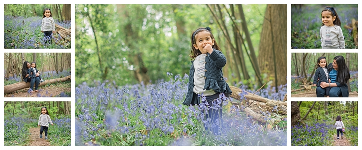 Essex bluebelle woods mini photo sessions